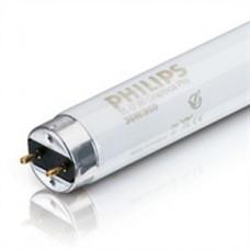 Лампа люминисцентная PHILIPS G13 18W/54 (Филипс)